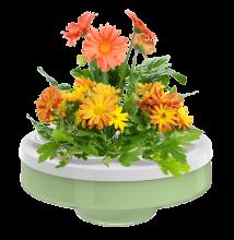 elegant plant pot