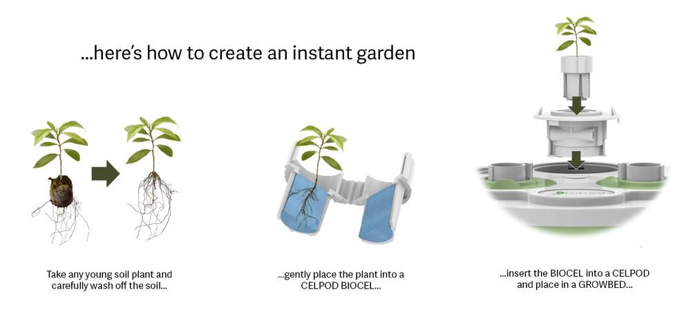 creating an instant garden