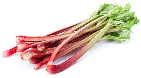 rhubarb_111265256_XS.jpg