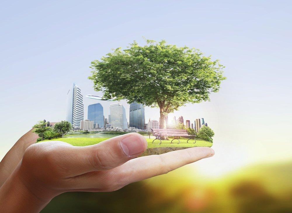 sustainability .jpeg
