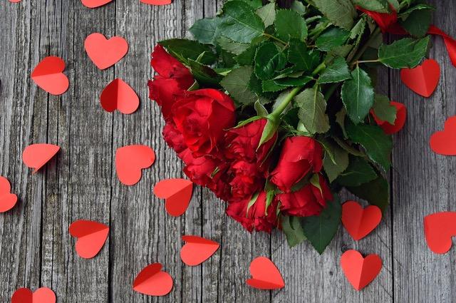 red-rose-3923288_1920.jpeg