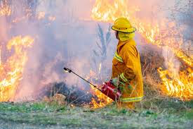 Fuel Reduction - S3 is working to become a Fuel Reduction and Vegetation Management expert by partnering with the industries top experts. We provide Fuel Reduction services to help mitigate wildfire hazards, catastrophic fire and the threat to the public.