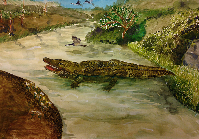 Crocodile  by Kaichen   (based on his summer vacation ) Watercolor on paper