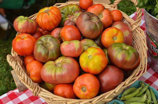 2014-tomatoes.jpeg