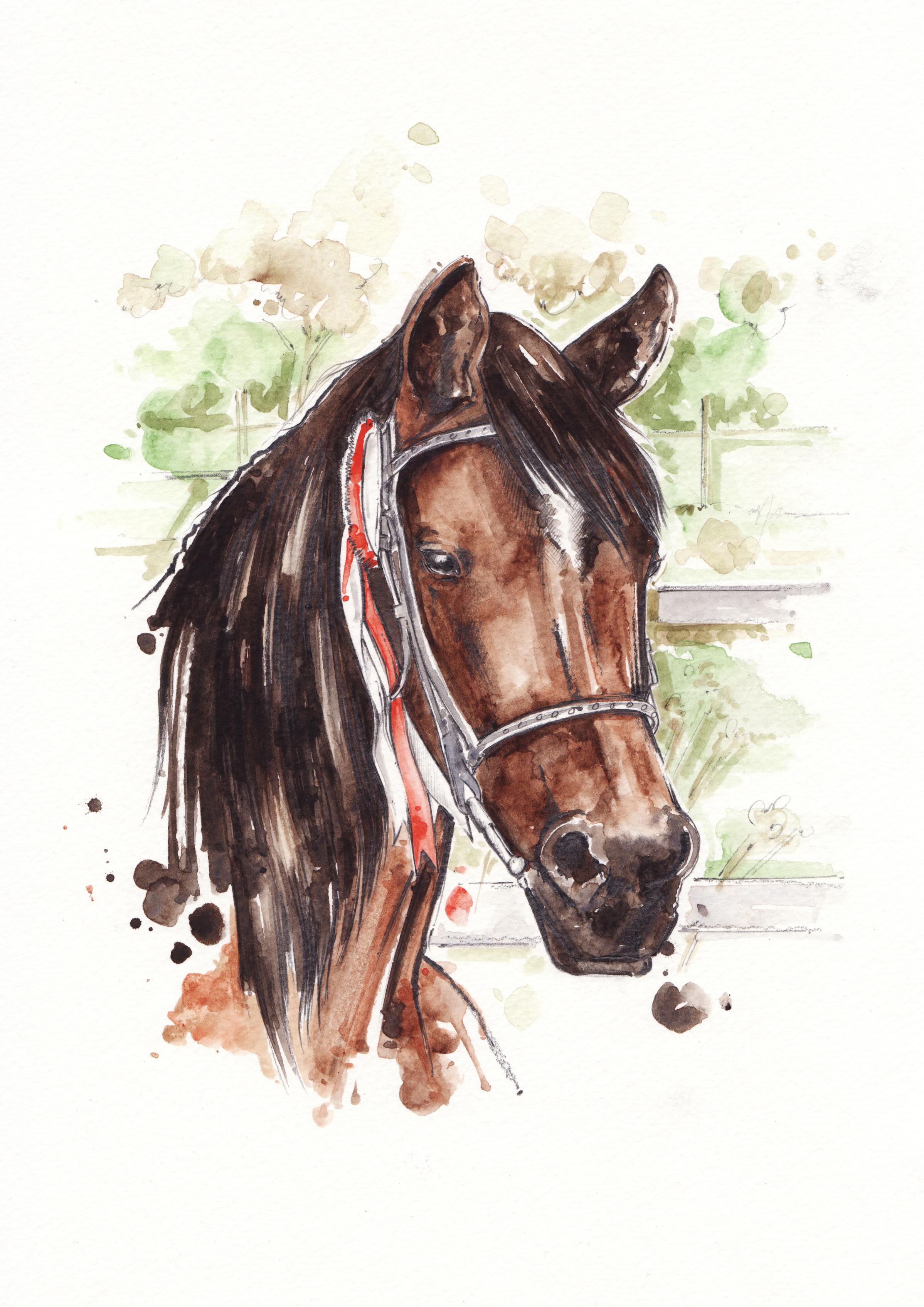LAUREN_HORSE