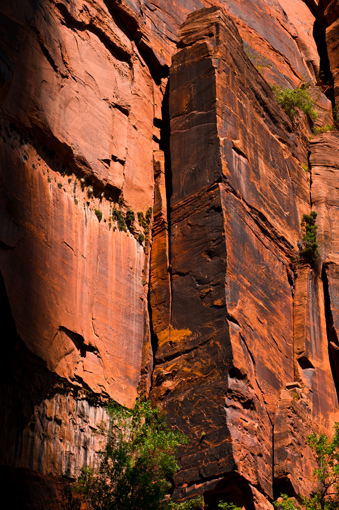 Copy of Cut Rock in Zion