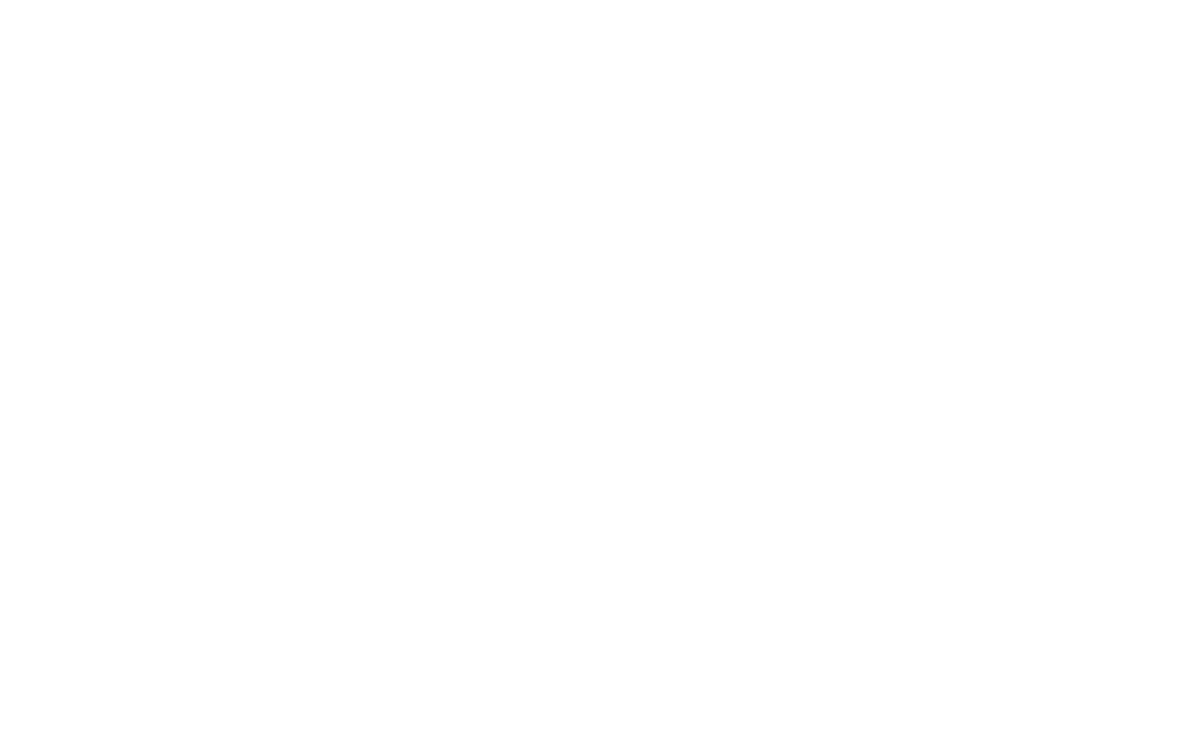 BPD Monitoring Team