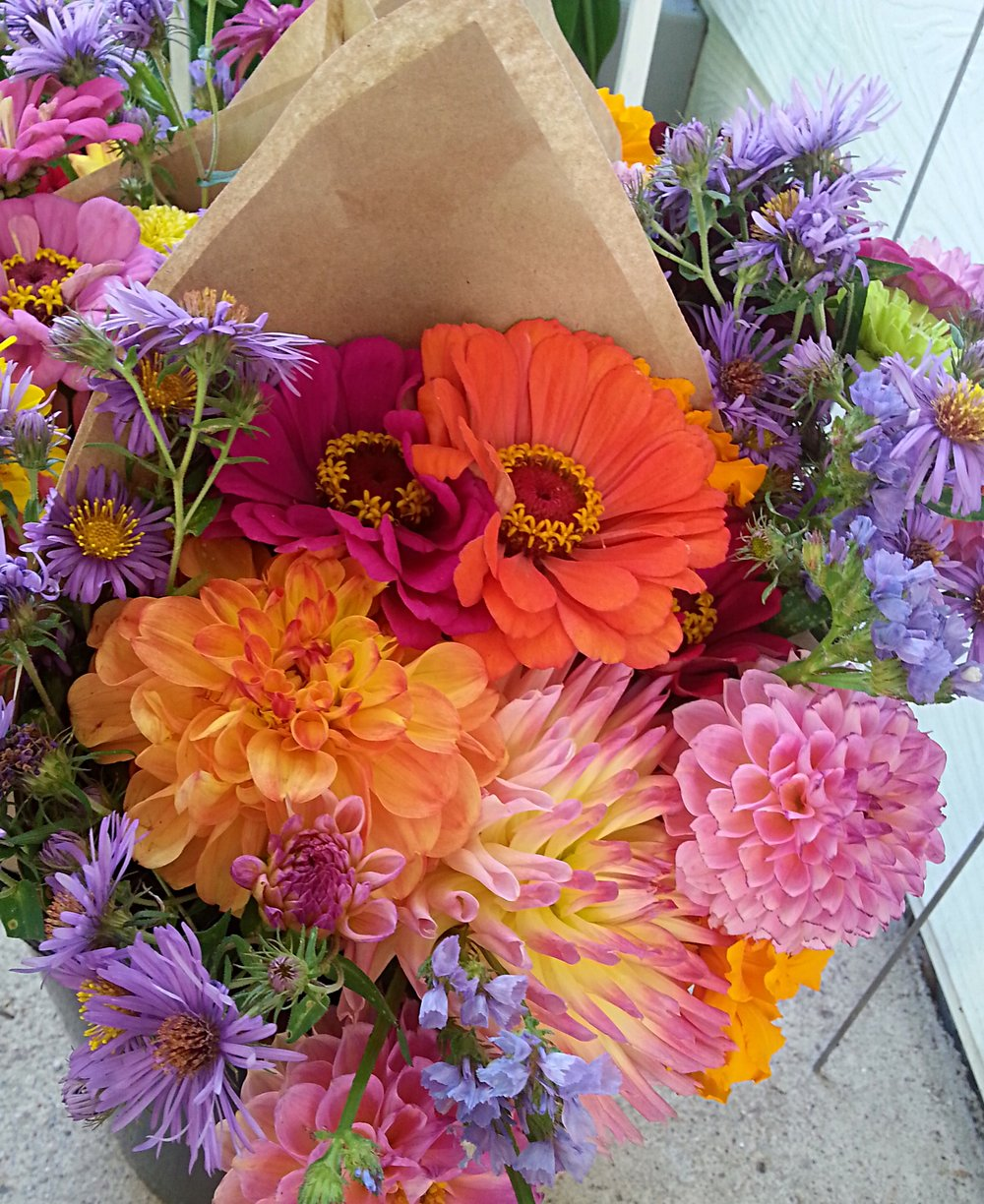 Zinnia, Dahlias, Marigolds, Asters, Statice