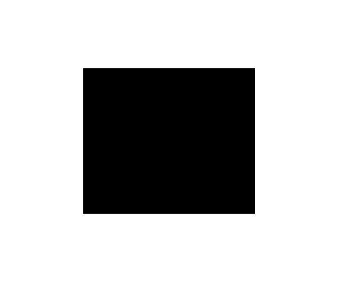 noun_1429118_cc.png