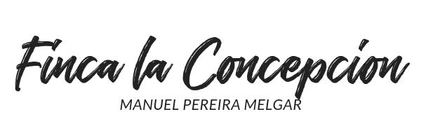 concepcion_header.png