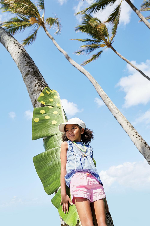 Janali-palm trees.jpg
