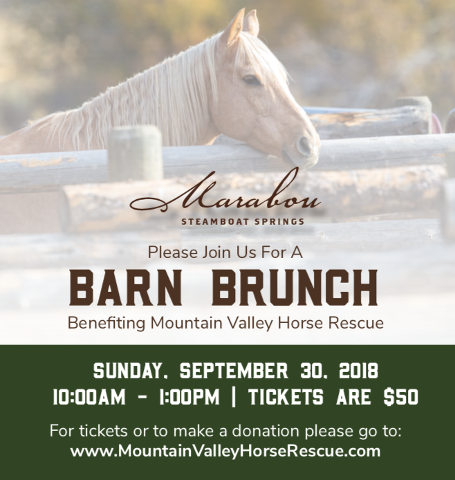 Join us in Steamboat Springs! - We are hosting a Barn Brunch at the beautiful Marabou Ranch in Steamboat Springs - tickets are $50 in support of the Rescue. We hope to see you there!  Purchase tickets here.