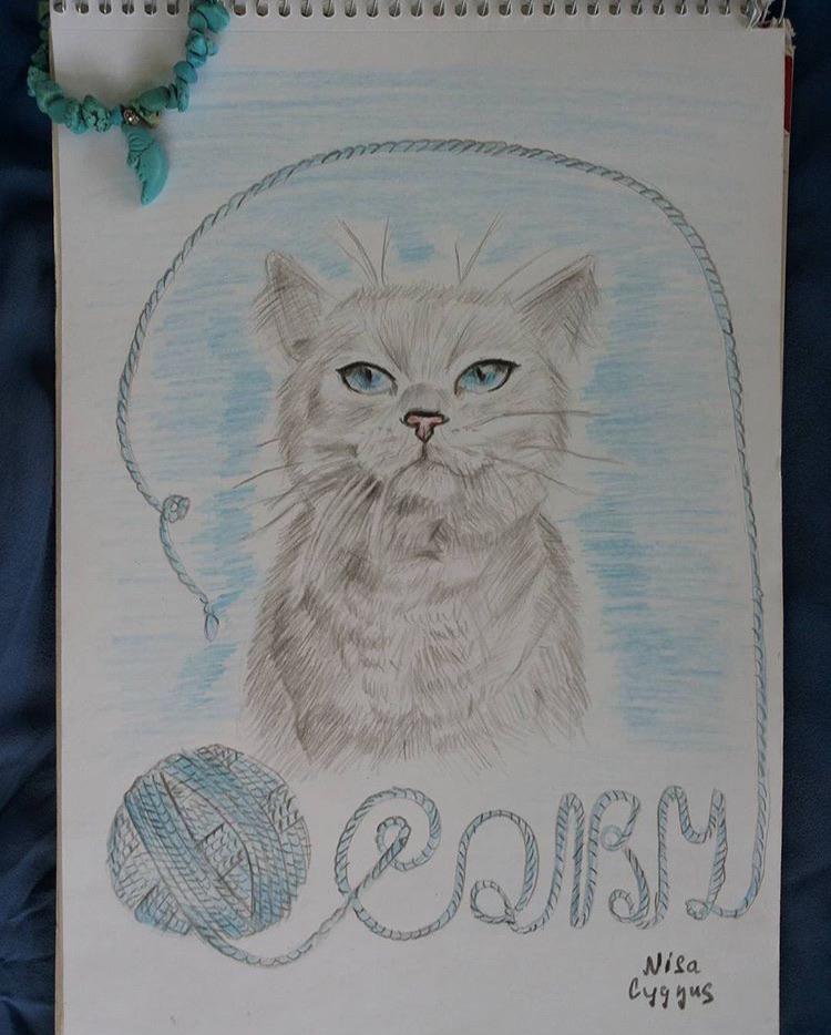 @nisa.cygnus.art