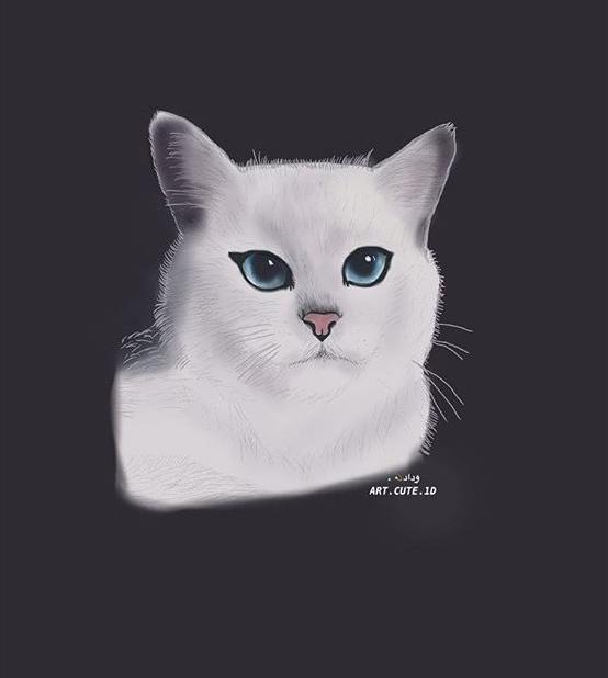 @art.cute.1d