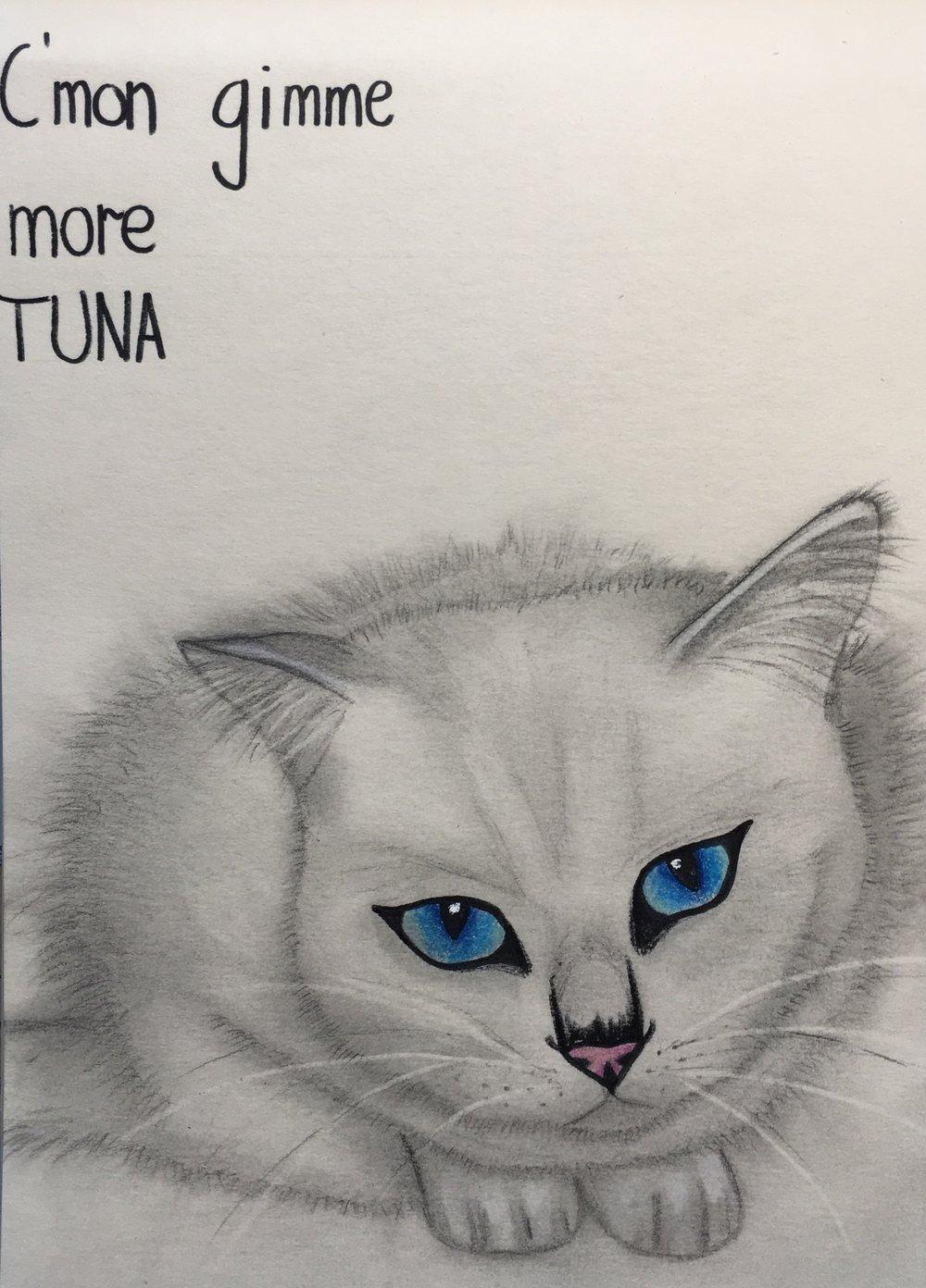 @nummu_da_fluffycat