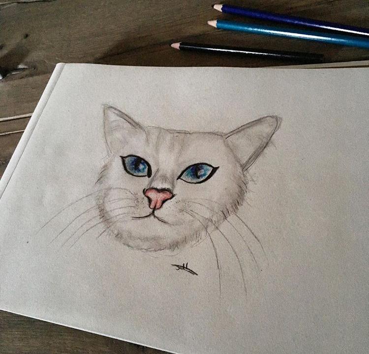 @sofie_drawings._