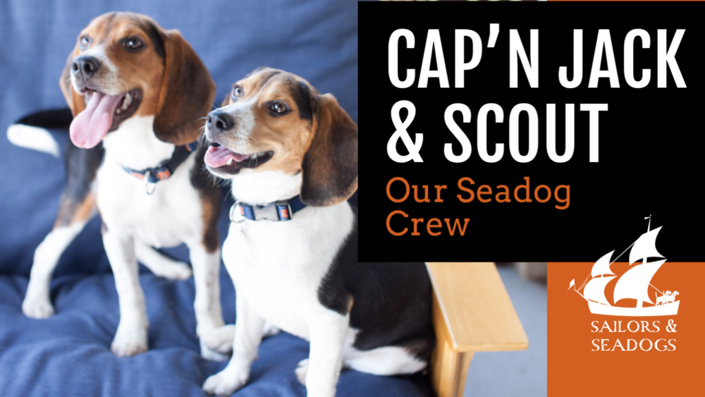 CLICK HERE TO READ MORE ABOUT CAp'N JACK & SCOUT