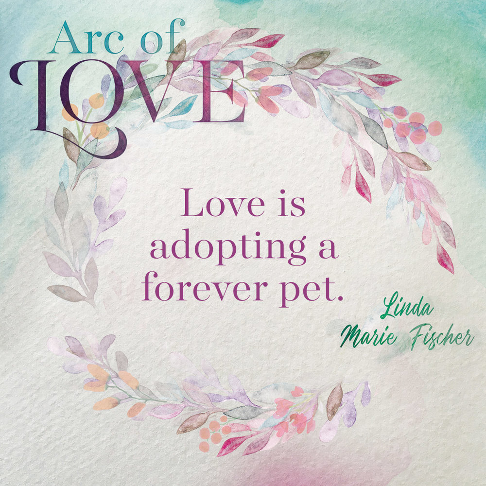 Arc of Love-Love Is Graphic