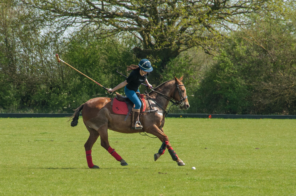 Summer Polo training -