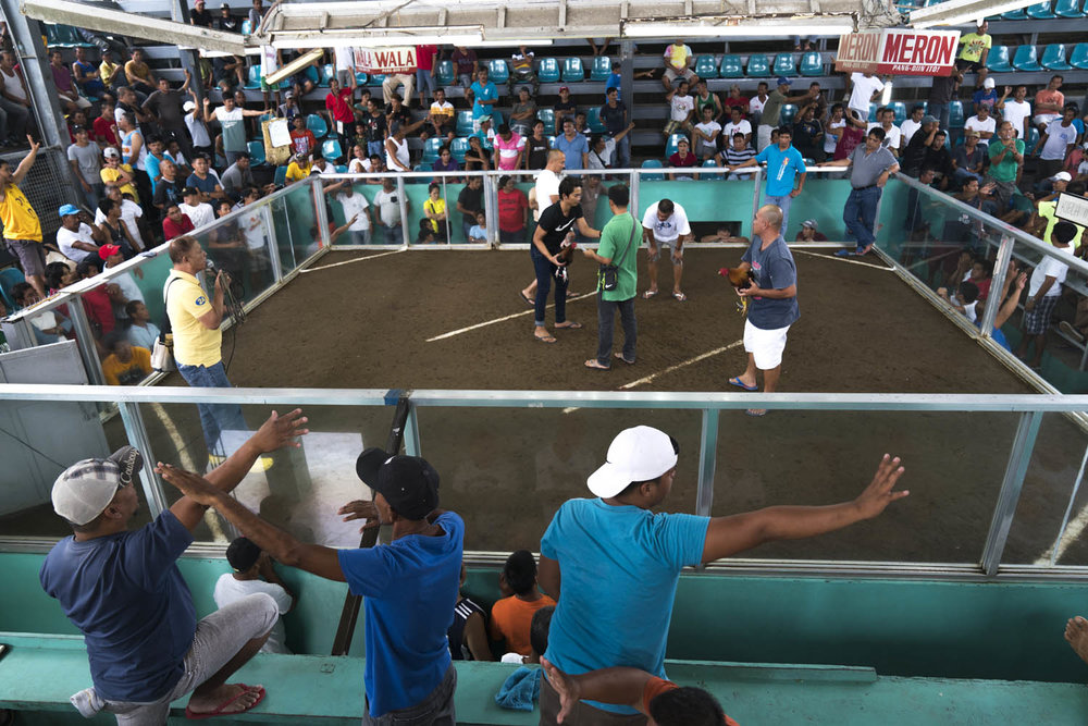 Bet-makers with their arms outstretched are ironically referred to as  Kristos (Christs) .-Rosario Cockpit Arena, Philippines-