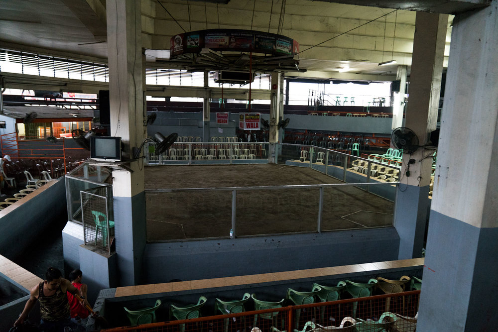 Early morning, main arena