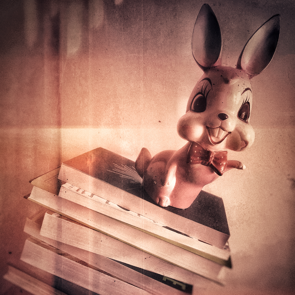 Bunny_Books_Photograph_by_DHDowling_c2018.PNG