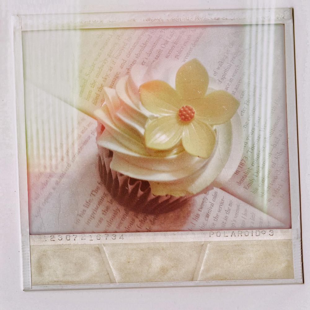 Cupcake_c2018_AliceBlanchard_PhotographbyDHDowling.PNG