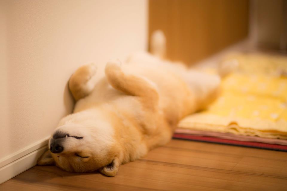 relax_by_marustagram-d6oo2zl.jpg