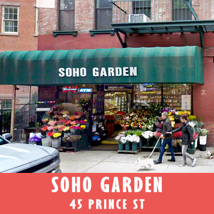 soho garden.png