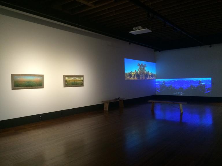 PASA (Public Art San Antonio) Gallery, Plaza de Armas, 2016