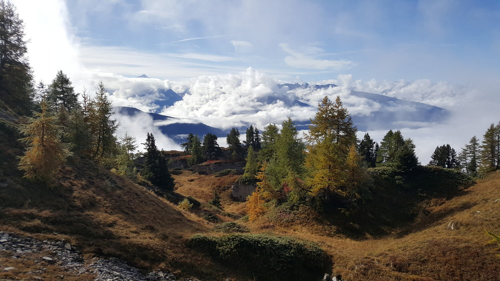 September.Lot's of Snowdonia scrambling dominated this month along with work for a school in Switzerland and a rock climbing course in Scotland for the Army. - Autumnal colours in the Swiss Valais