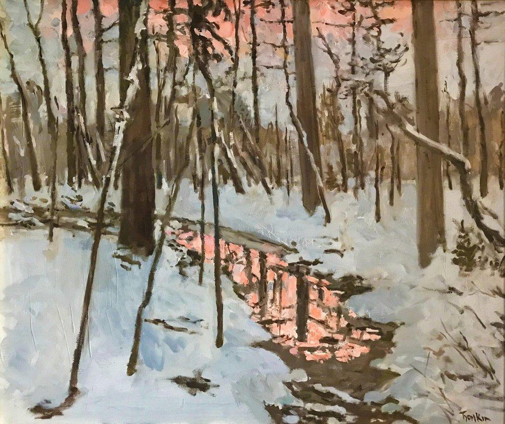 Winter. Prospect Park