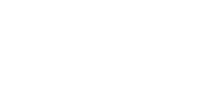 mandarineNapoleon-logo-white.png
