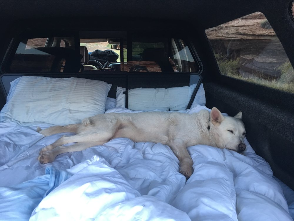 riding in the truck is exhausting