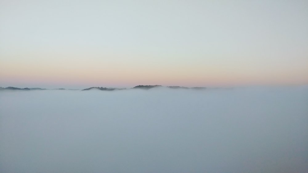 Morning fog in Red River Gorge from Chimney Top Rock at sunrise.