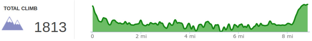 Elevation profile of Rock Bridge Arch and Swift Camp Creek hike (reverse lollipop)
