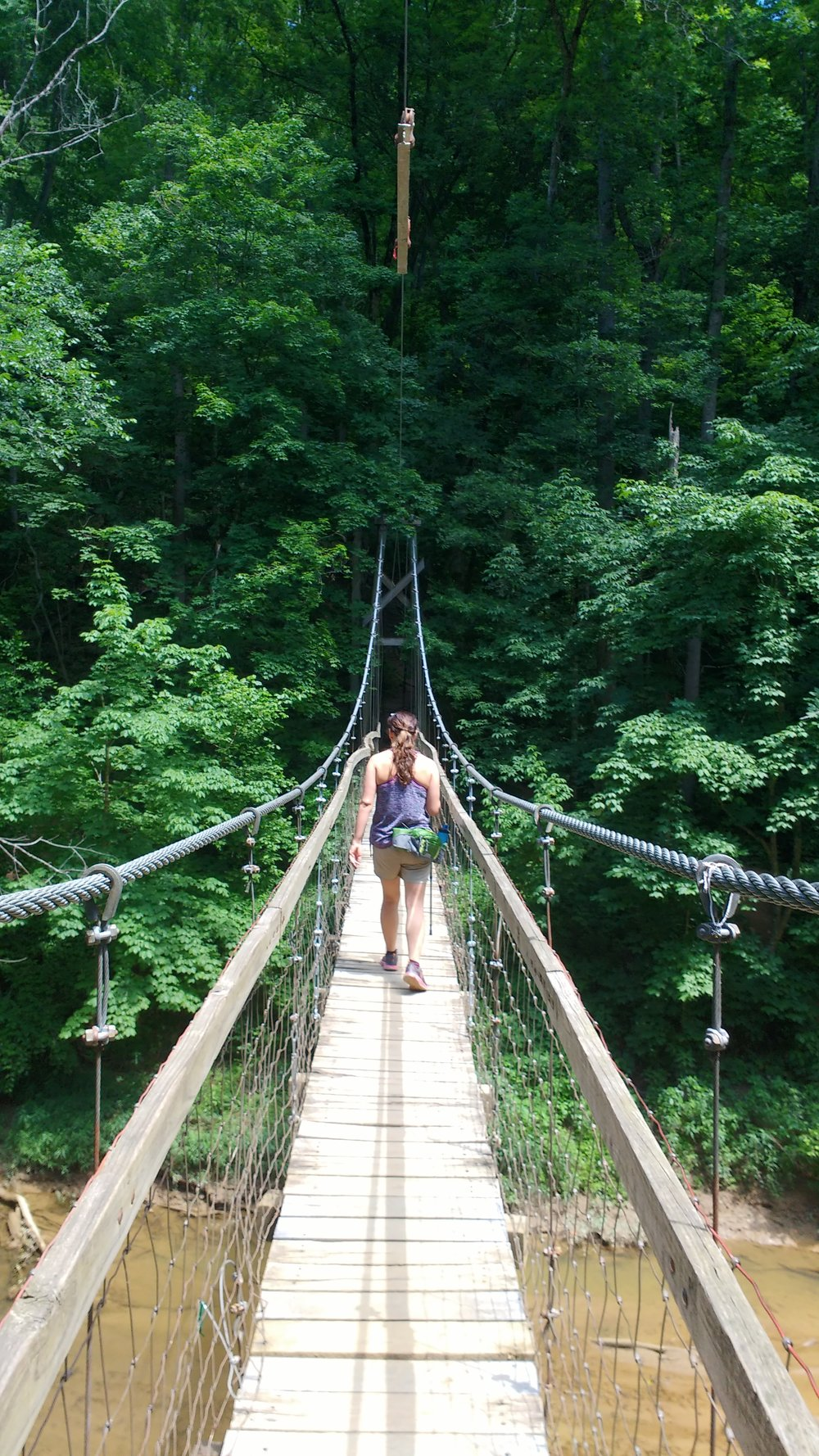 Suspension bridge on Sheltowee Trace above Red River