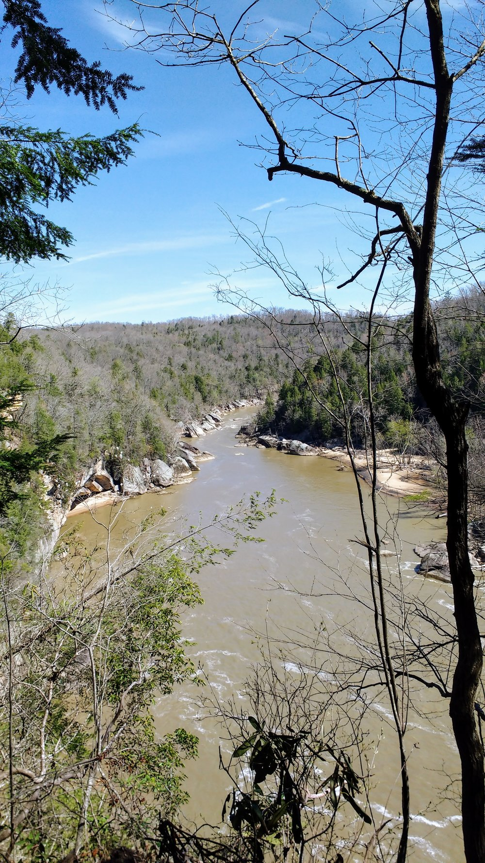 A view downstream of Cumberland River from Eagle Falls Trail