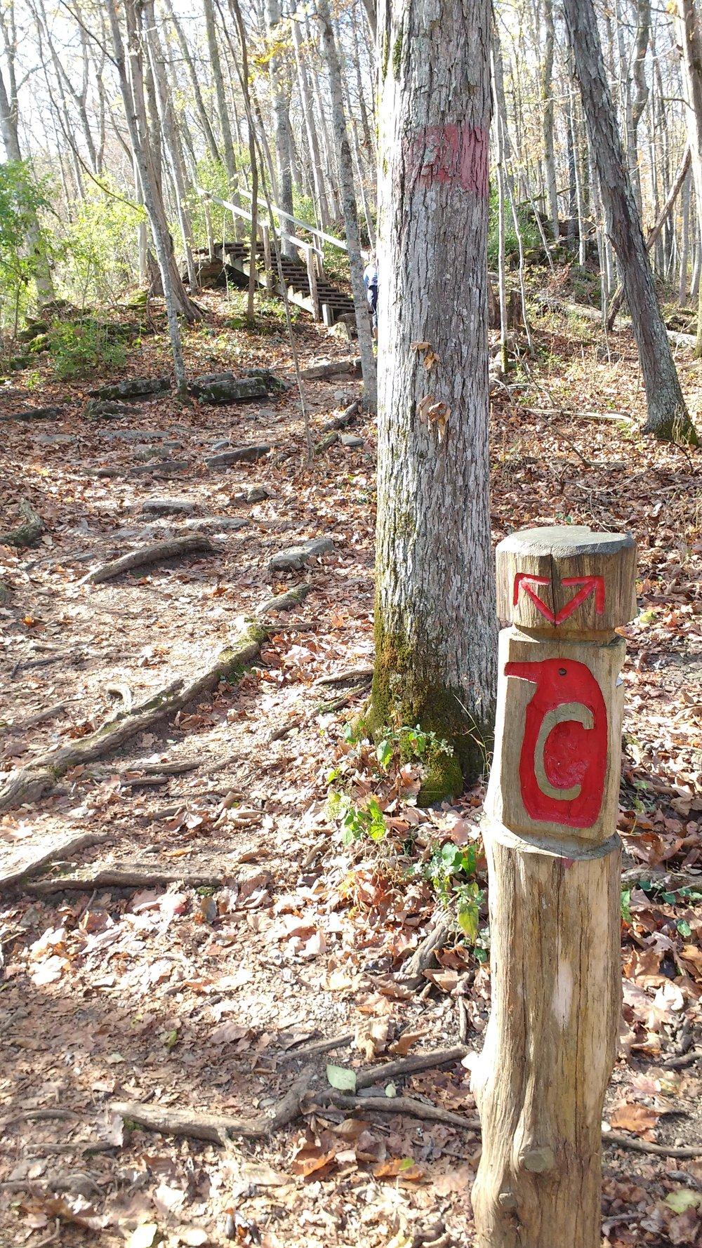 Trail marker at Raven Run Nature Sanctuary