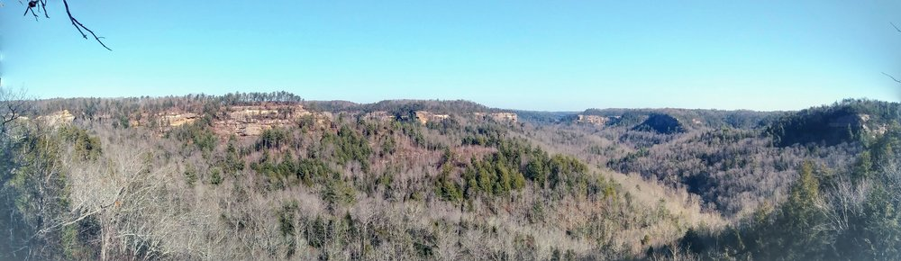Panoramic view of Red River Gorge