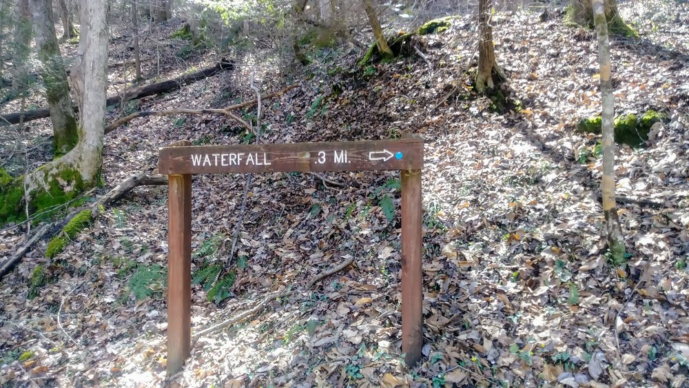 Trail sign for Big Spring Falls spur trail