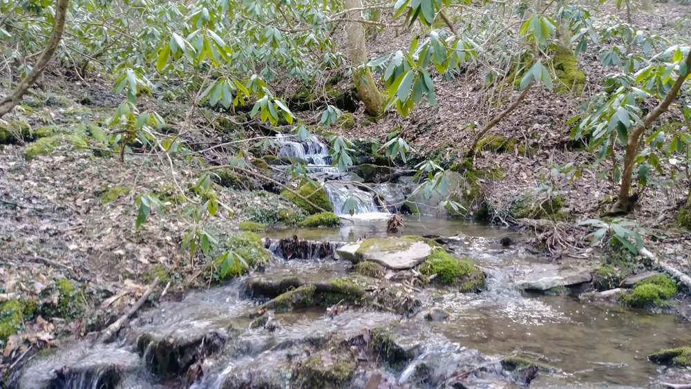 A small cascade above Lick Creek