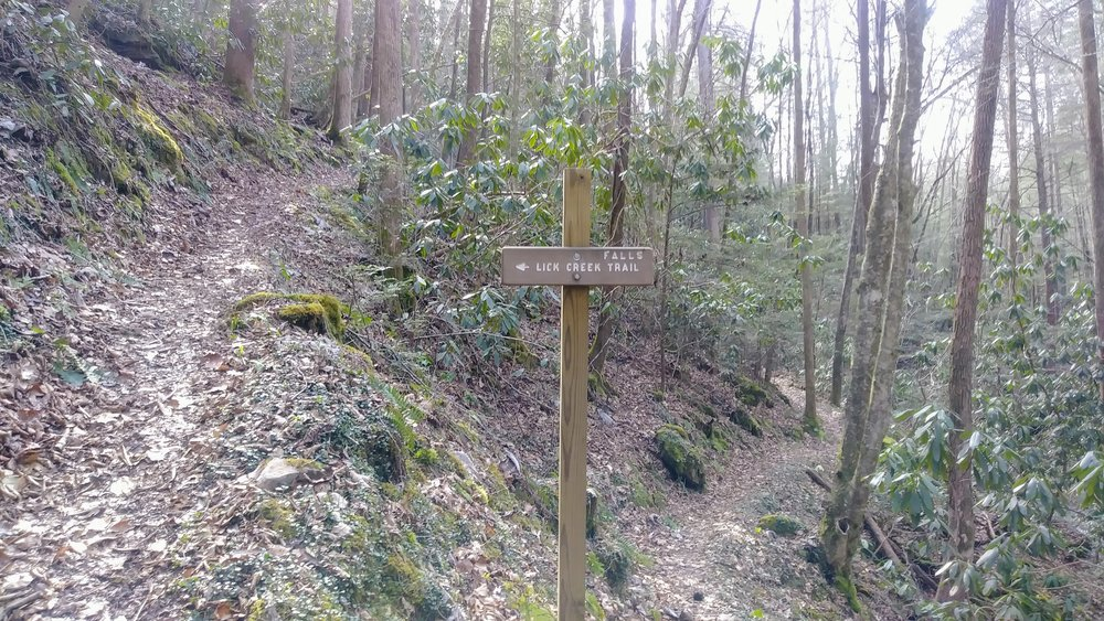 Trail sign pointing to Lick Creek Falls Trail