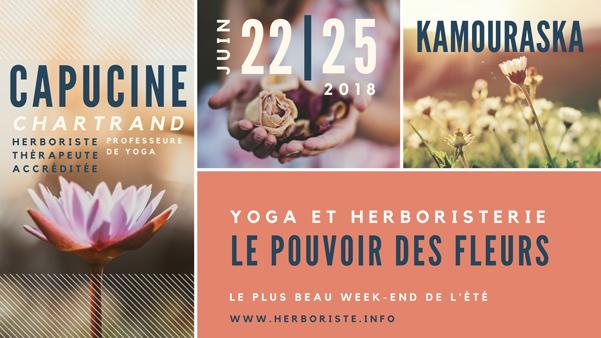 Retraite yoga et herboristerie Le pouvoir des fleurs