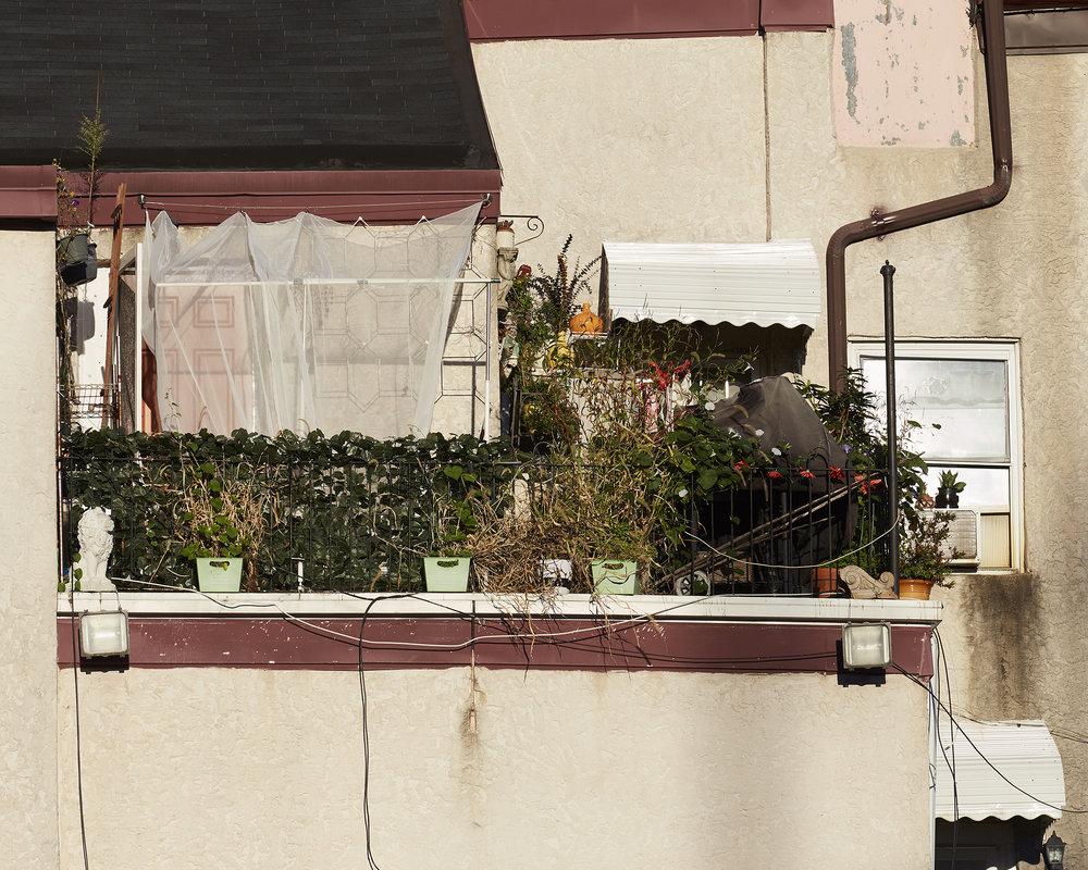 roof garden_.jpg