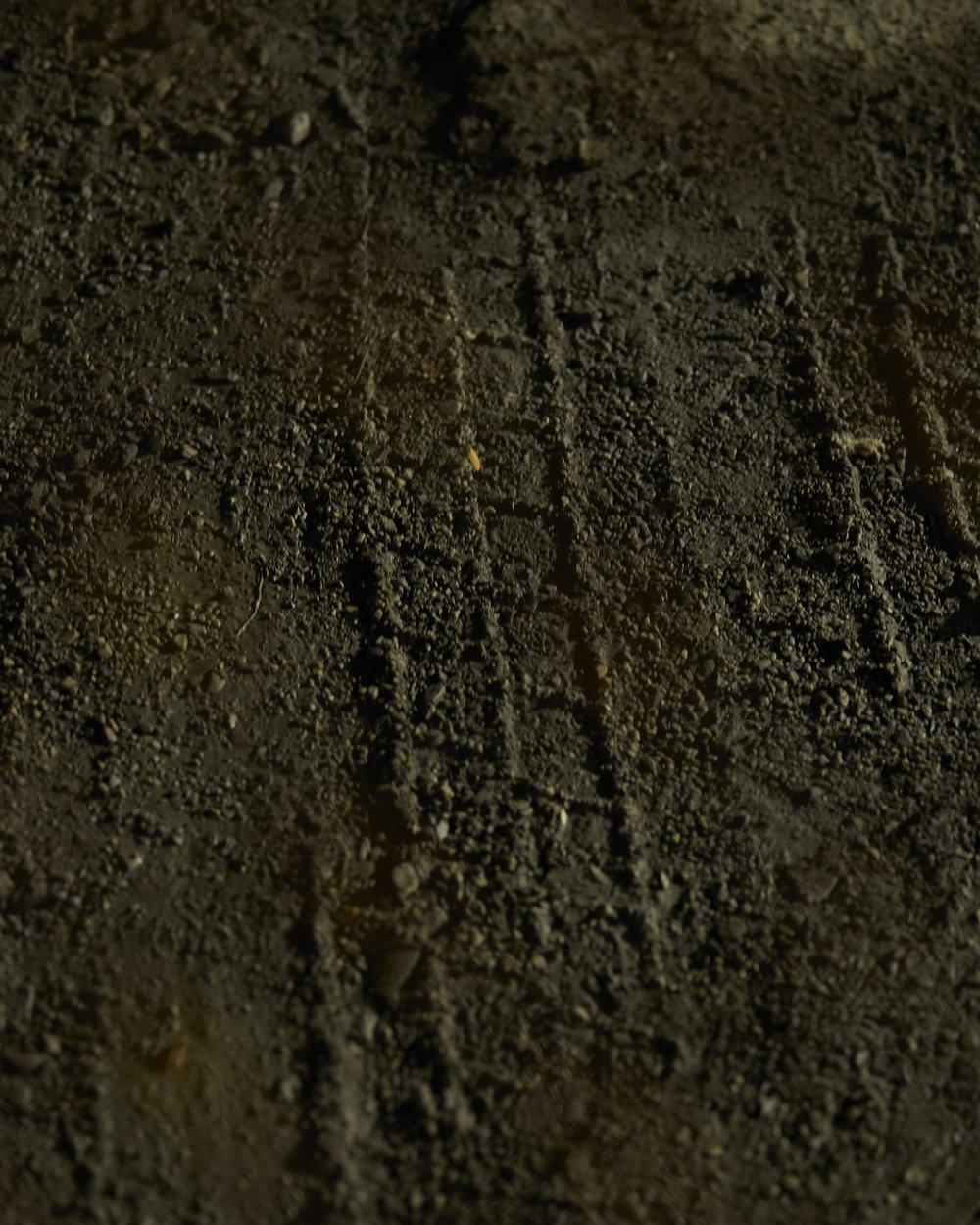 tire marks_.jpg