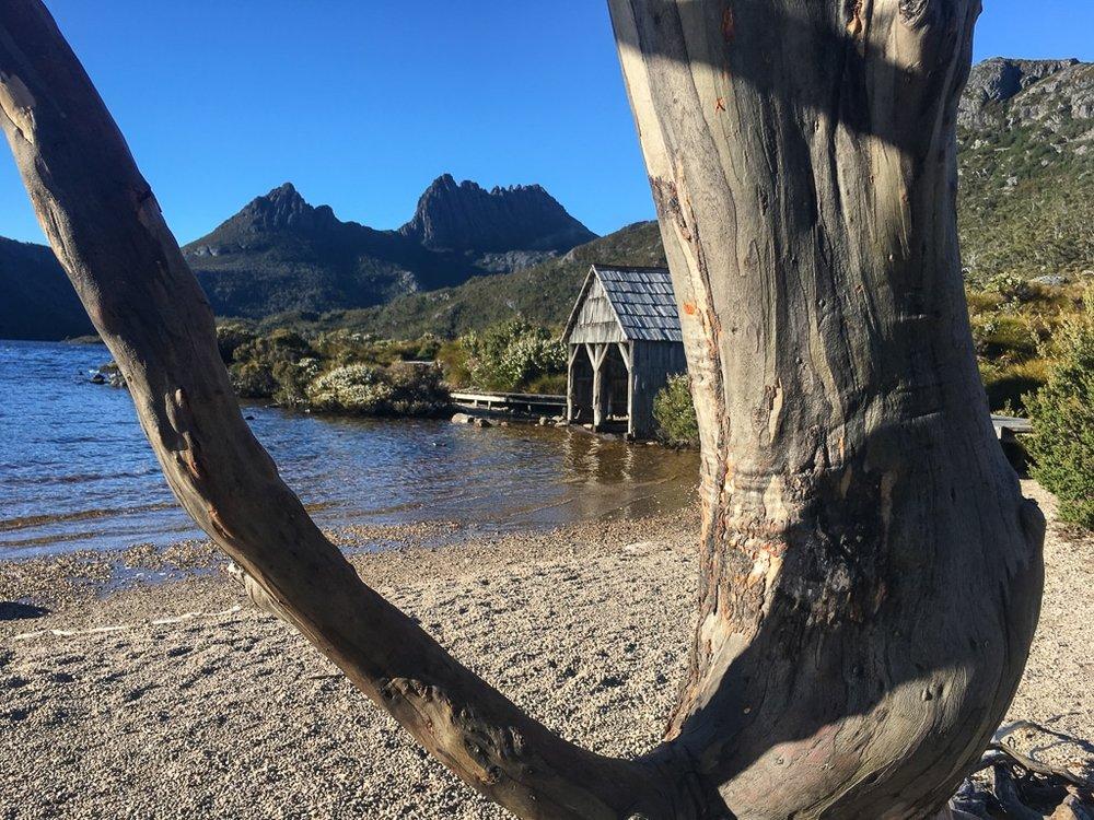 Tasmanian Walking Tour Cradle.jpg