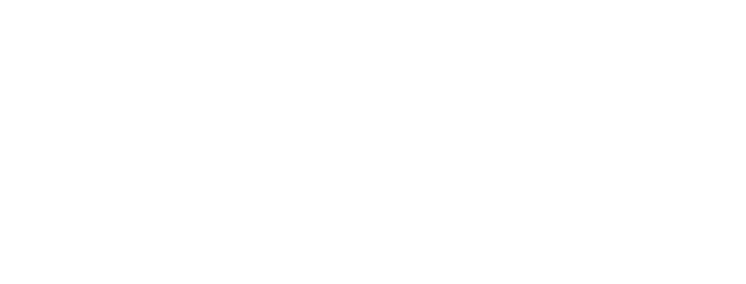 The Nomad Coaching