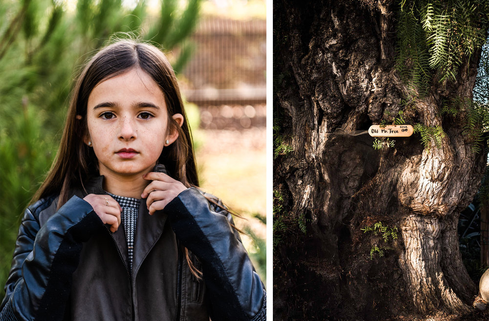 Lisa Hu Chen orange county family photographer young girl in leather jacket old mr. tree in san juan capistrano