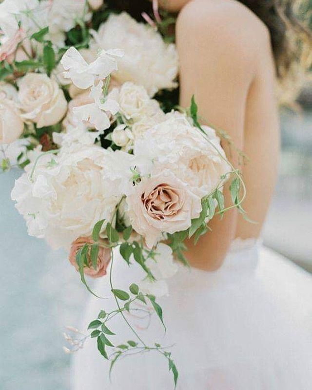 It can be overwhelming curating your dream team of wedding vendors. That's why we have put together a post to assist  with your early planning stages. ✨  Check out our full post in the bio to take the lead on booking your wedding day vendors.